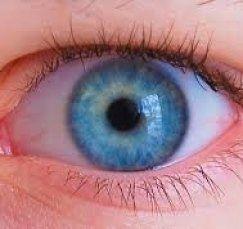 malattie della vista, degenerazione maculare