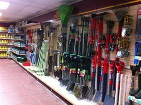 Garden plants - Harrow, Brent, Bushey - The Plantation Garden Centre