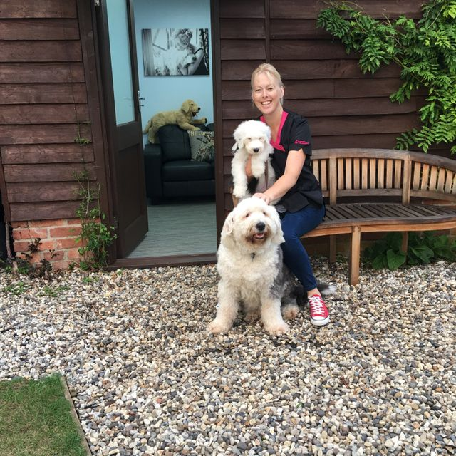 We Are The Local Pet Groomers In Radwell