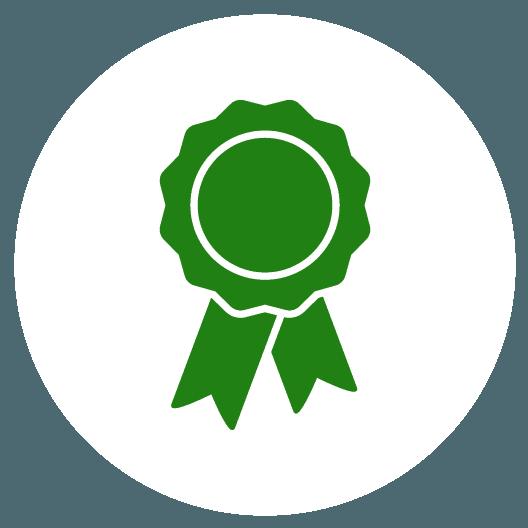icona medaglia