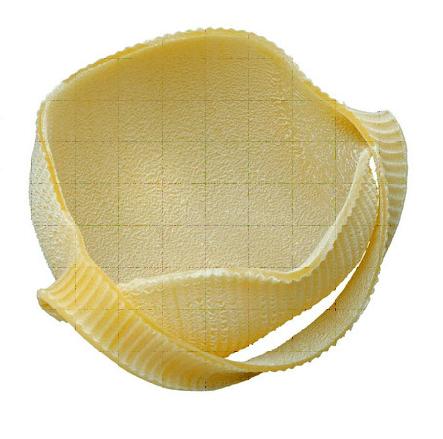 pasta a forma di borsetta