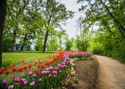 Sale per giardini