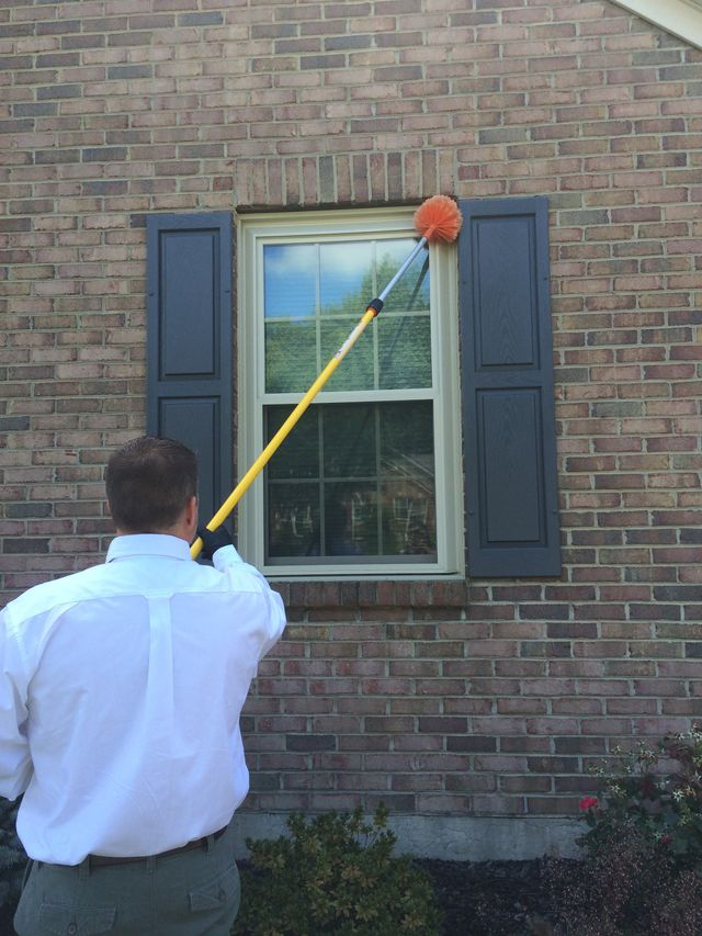 Professional providing bug extermination service in Kings Mills, OH