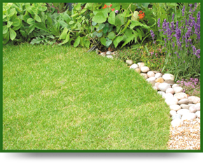 Professional garden maintenance service in christchurch for Gardening services christchurch