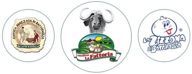 loghi Mozzarella di bufala