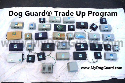 Dog Guard® VS Invisible Fence®