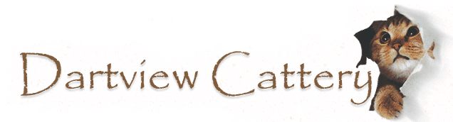 Dartview Boarding Cattery logo