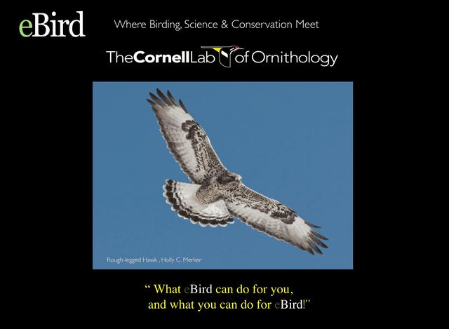 Bartramian Audubon Society | Bartramian Audubon Society