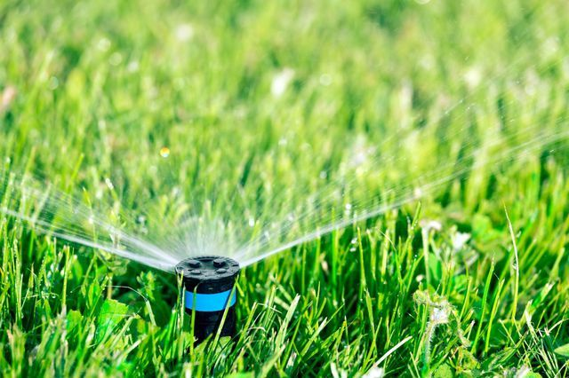 Sprinkler for lawn placedby our irrigation installation team in Orange Beach, AL