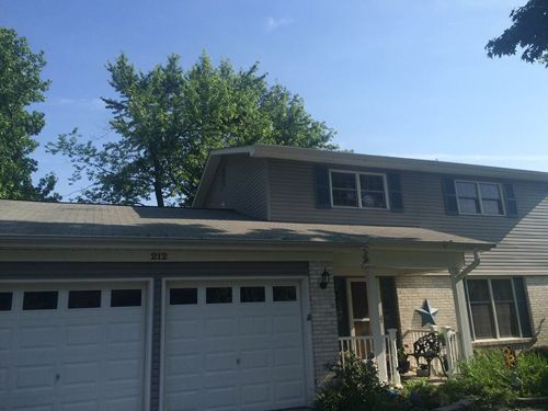 Professional trimming branch serviceTree removal, trimming and pruning services in St. Charles, MO