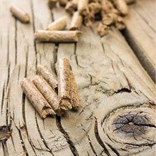 legna e pellet