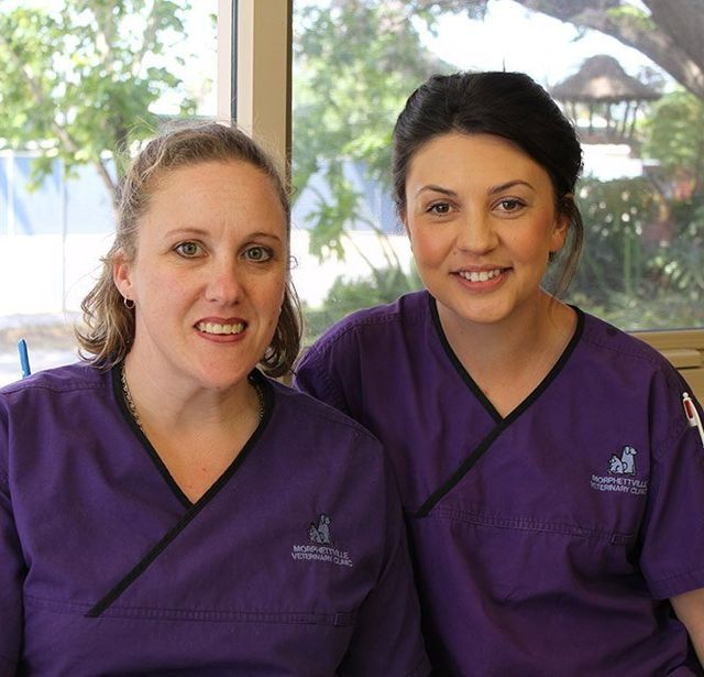 Our pet vaccination experts in Adelaide