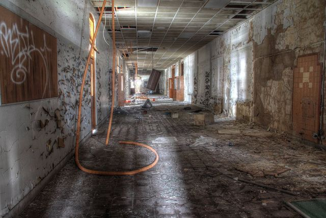 Many biological contaminants can be present in water-damaged homes and buildings