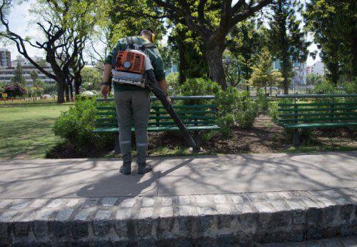 pulizia di un'area verde