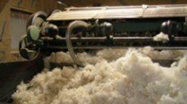 realizzazione materassi con lana del cliente