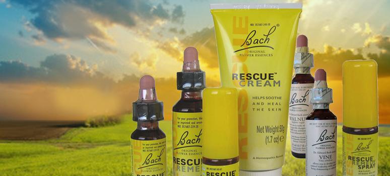 rescue cream bach flower essences remedy body calm
