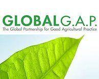 logo GLOBAL G.A.P