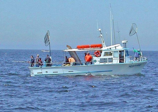 Sportfishing | Half Moon Bay, CA | Riptide Sportfishing