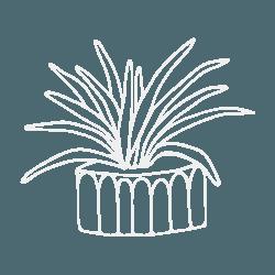 icon of plant