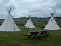 Teepees at Downata
