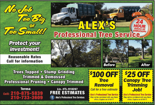 End-of-Year Special Exclusive Promotion  sc 1 th 185 & Professional Tree Service San Antonio TX | Lawn Maintenance ...