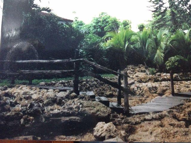 Quality Railroad Ties | Miami, FL | Pelton Palms