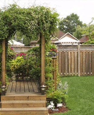 Small decking area covered with a pergola surrounded by shrubs and privet