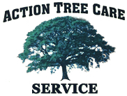 Tree Services Buffalo, NY