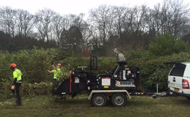 Morrisen Tree Surgery & Fencing Contractors Ltd