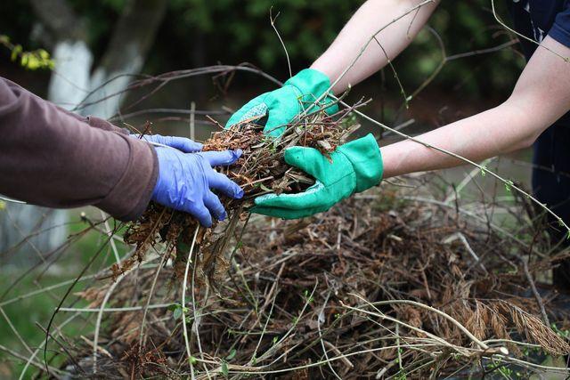 Vegetation waste removal
