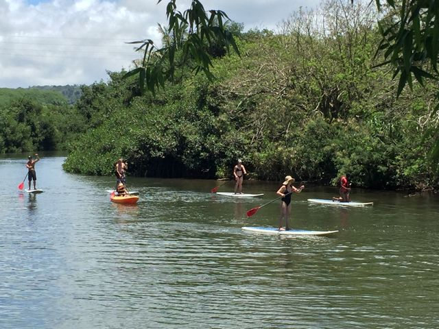Paddle boarding and guided tours on the Anahulu River at Tsue's Farm in the North Shore, HI