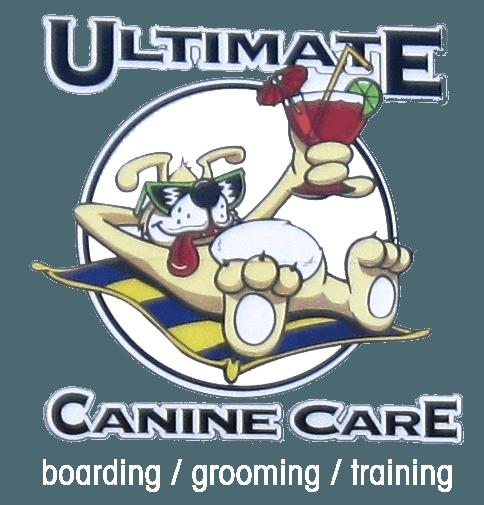 Dog Boarding Burlington, NC