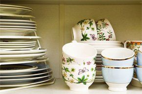 Plates Cups