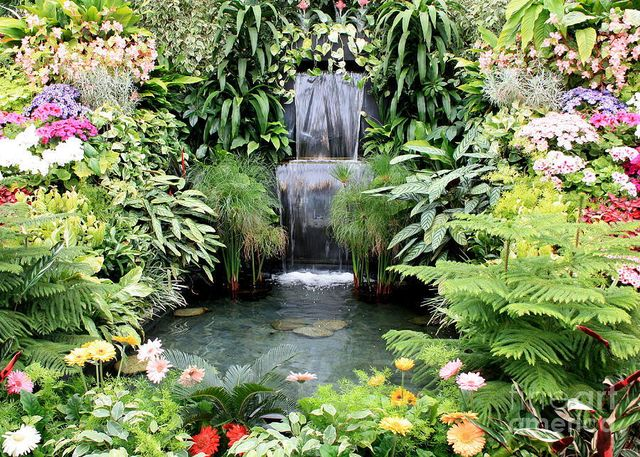 Waterscaping | Columbia, MO | Specialty Water Gardens & Landscapes