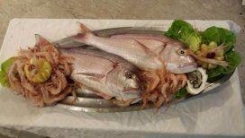 pesce pescato a ponza