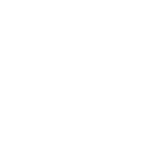 30 years of experience logo