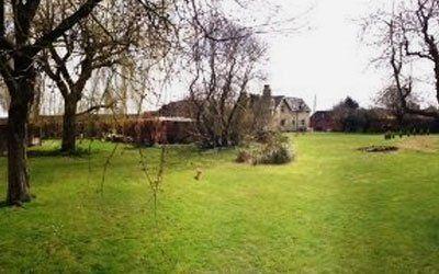 empty lawn