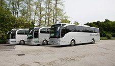 autobus servizi