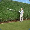 giardiniere mentre taglia piante da giardino