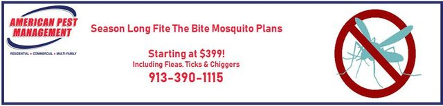 Pest Control | Kansas City, KS | American Pest Management