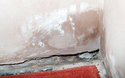 exterior wall damp