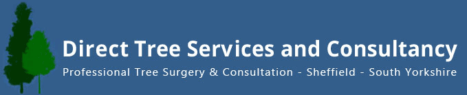 Direct Tree Services and Consultancy logo