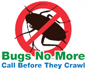 Bugs No More | Termite & Pest Control Bryan, College Station & Caldwell TX
