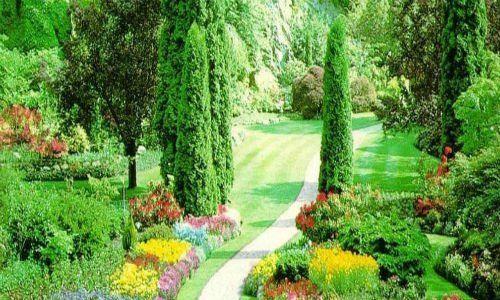 un giardino fiorito