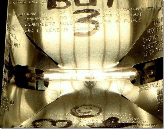 Z-XG Extreme Glare Lens