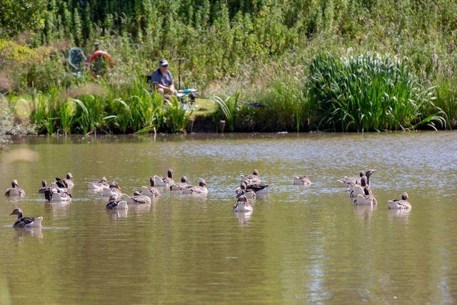 Moss Lake Fishing