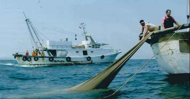 Pescatori raccogliendo la rete