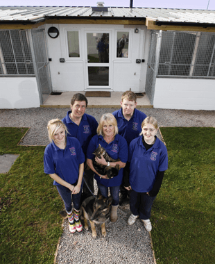 Cattery and kennel - Gloucester, Gloucestershire - BJ Boarding Kennels & Cattery - Kennel