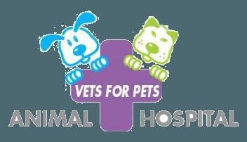 Vet Clinic Fayetteville, NC & Dunn, NC | Vets for Pets Animal Hospital