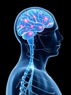 Braincore Therapy Nassau County, NY